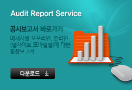 Audit Report Service